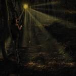 Bois en automne Alastair Magnaldo Photographie d'Art