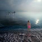 Swan Lake Alastair Magnaldo Photo Art