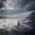 Photo of a swamp Photo Art Alastair Magnaldo