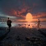 l'origine oeuf camargue Alastair Magnaldo Photographie d'Art surréaliste