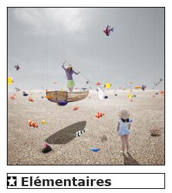 elementaires-galerie-de-photos-art